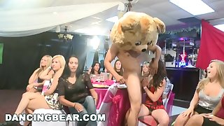 DANCING BEAR - Crazy Party Girls Get Copulated By Precede b approach Strippers